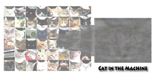 Cat in the Machine